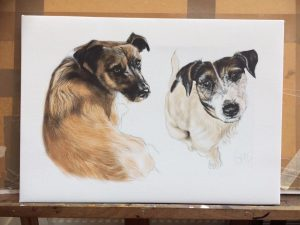 Pet portrait by Sue Mclachlan animal portraitist Hampshire