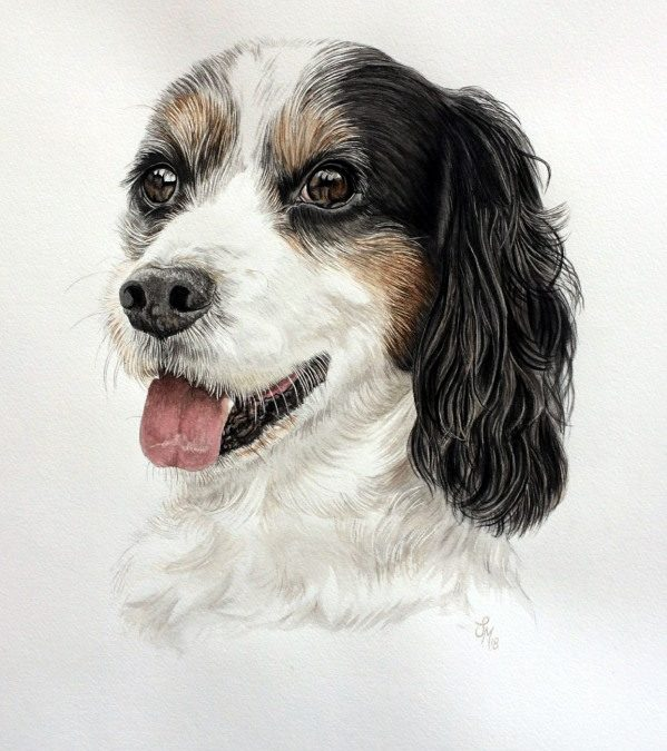 Watercolour Pet Portrait obtained from selling my house!